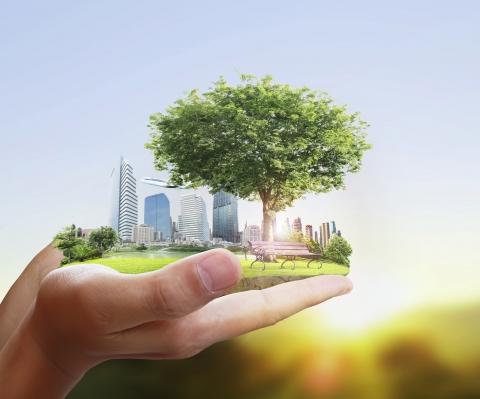 Segurança e meio ambiente